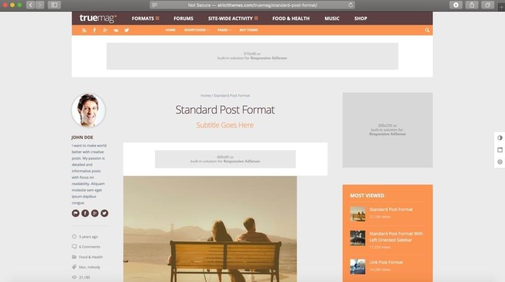 TrueMag WordPress Theme Example Image for Ads