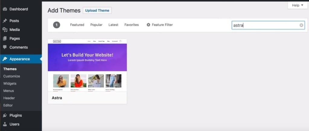 WordPress Website Search Astra Theme