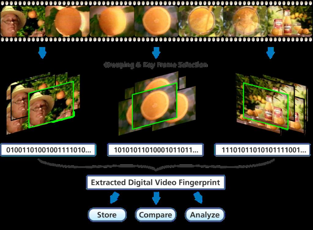 Automatic Content Recognition (ACR) Fingerprint Example 1